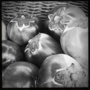 eggplant convention