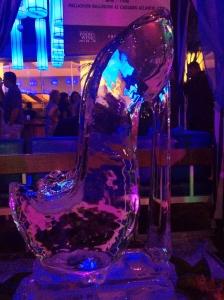 Ice Shoe!